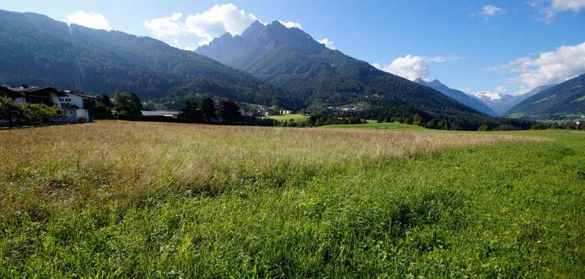Austria_Austrian-Tyrol_Neustift_valley-view.jpg